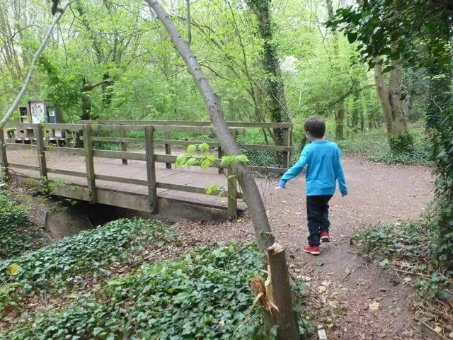 over the bridge at anglesey abbey