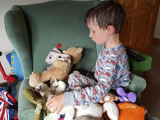 sorting out his teddy bears