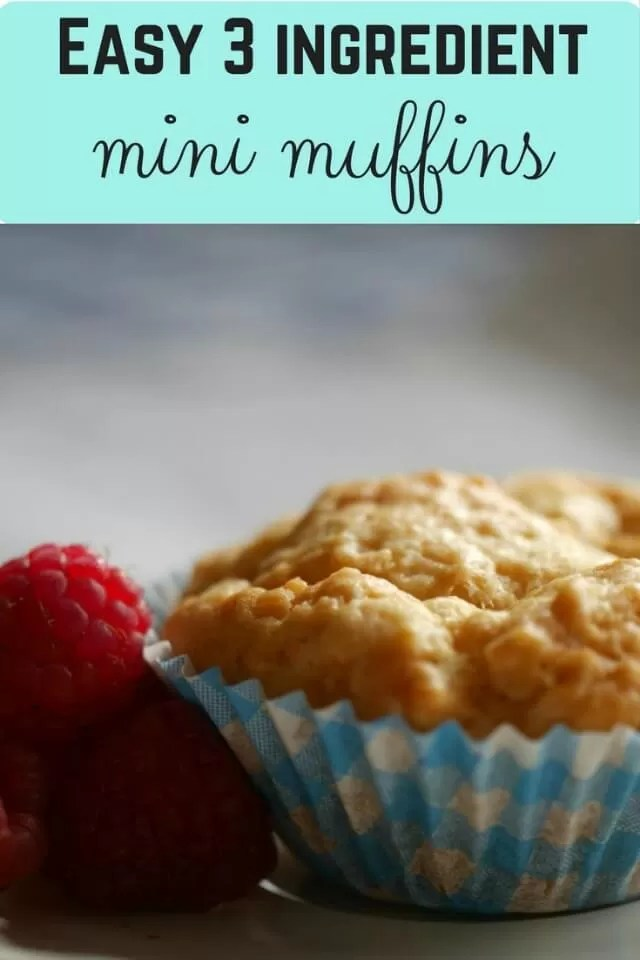 Easy 3 ingredient mini muffins - Bubbablue and me