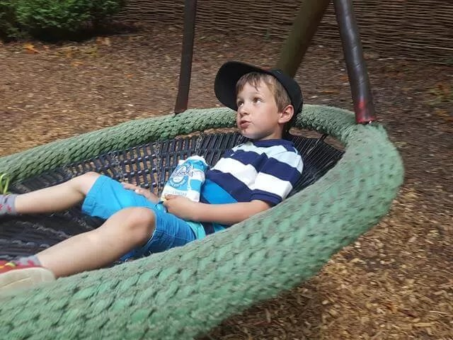 relaxing in the swing