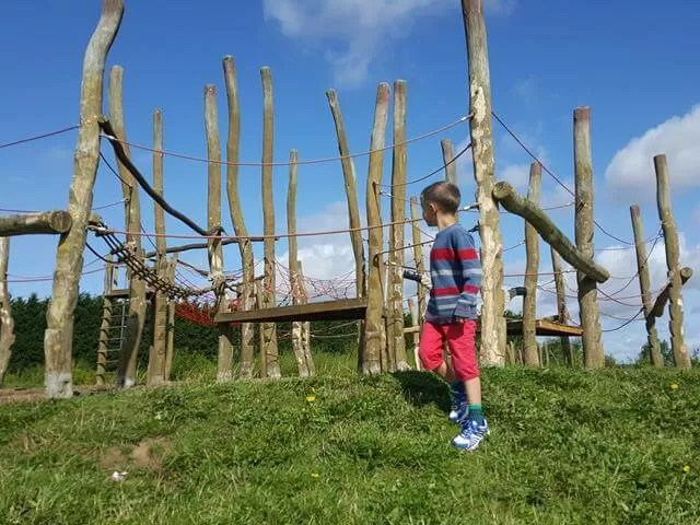 checking out the country park obstacle rope course