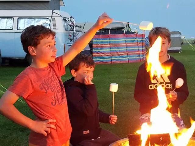toasting marshmallows on campfire