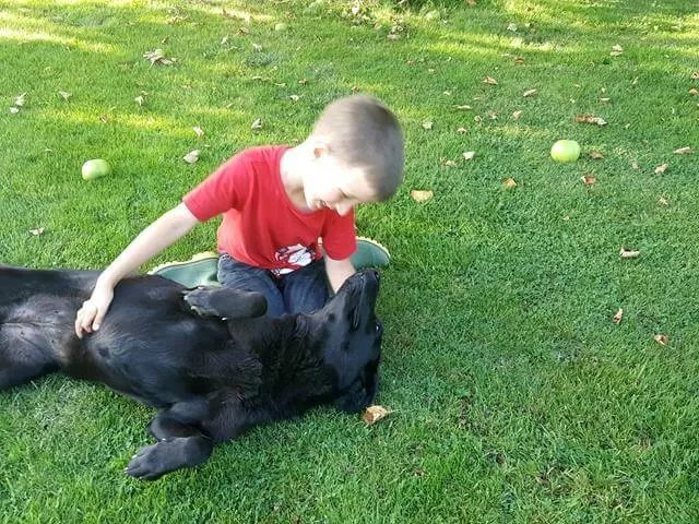 boy and dog best friends