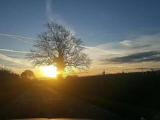 sunrise ahead on the road