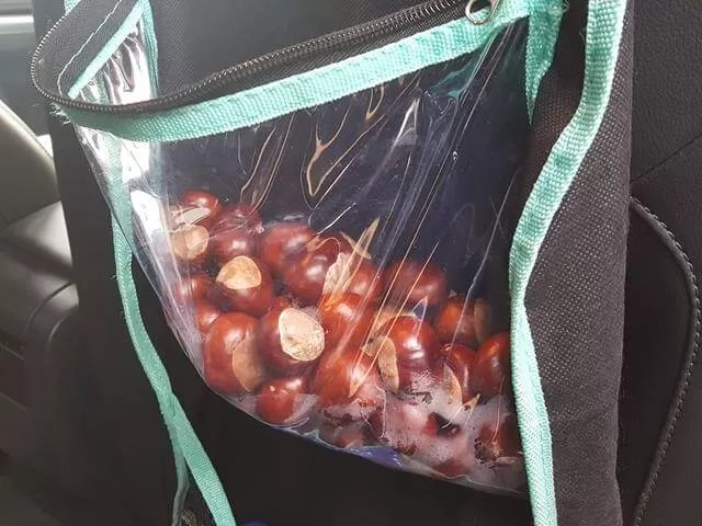conker collection