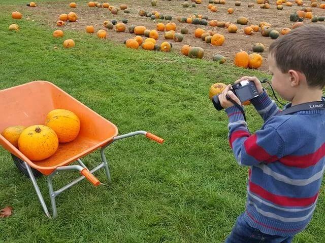 photographing pumpkins