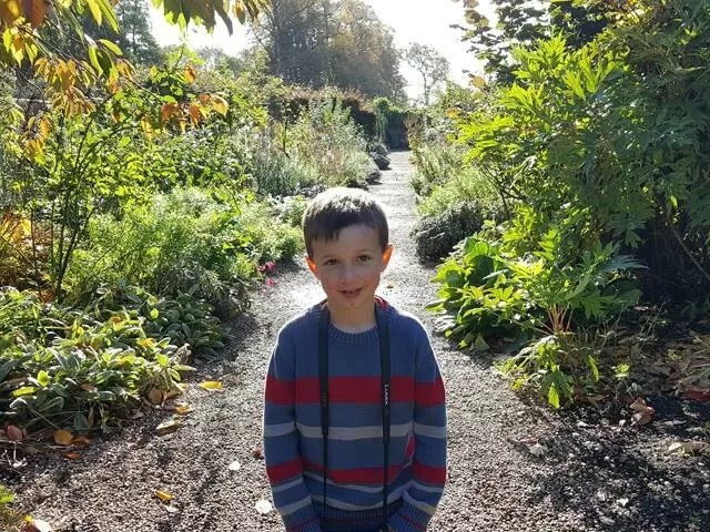 halo of light hightling child in a walled garden