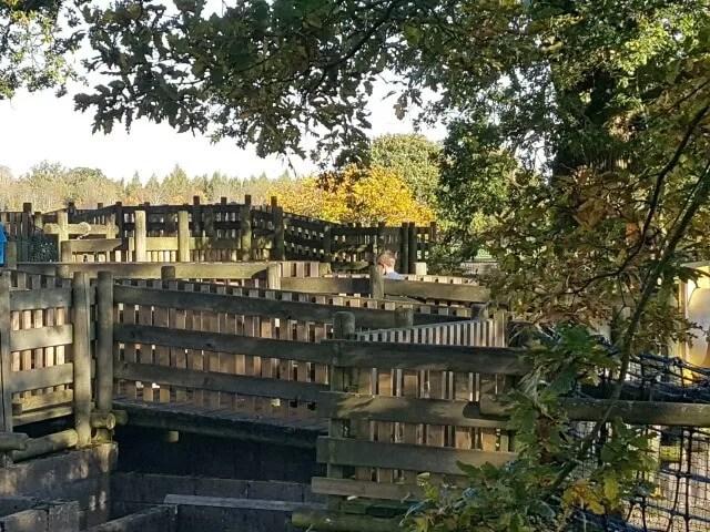 walking the ragley hall maze and bridges