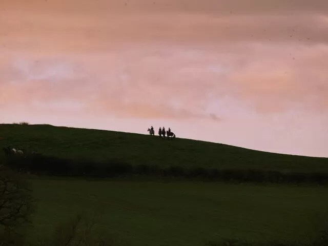 Hunt at sunrise