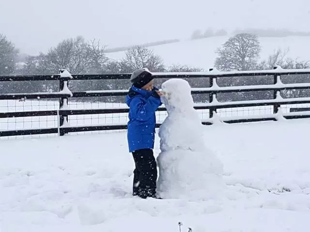 carrot on the snowman
