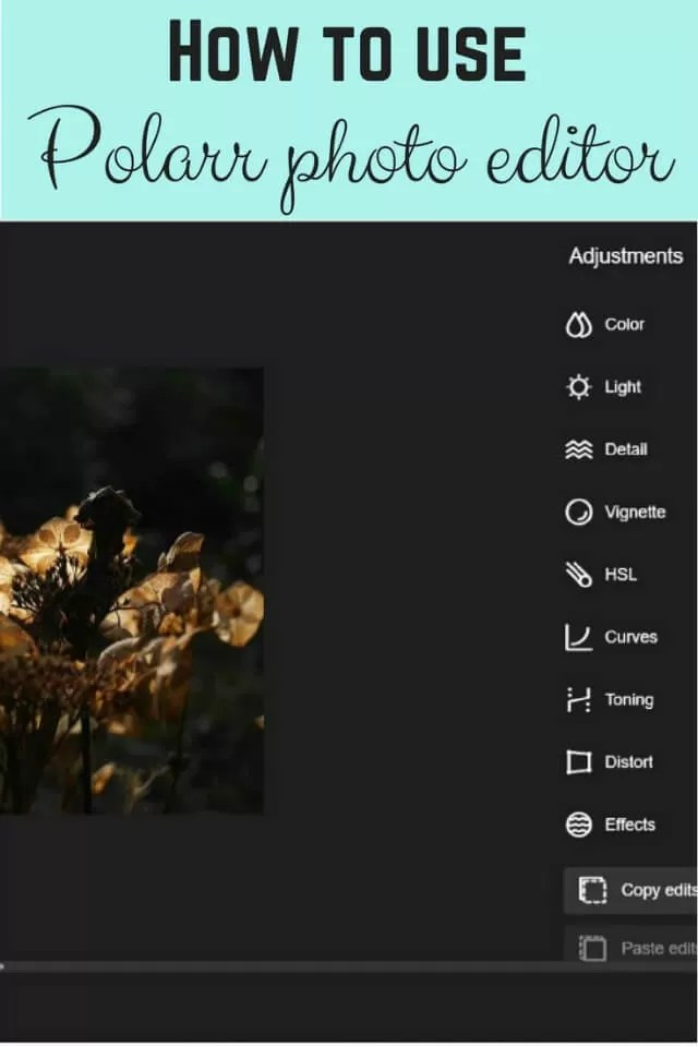 how to use Polarr photo editor - Bubbablue and me