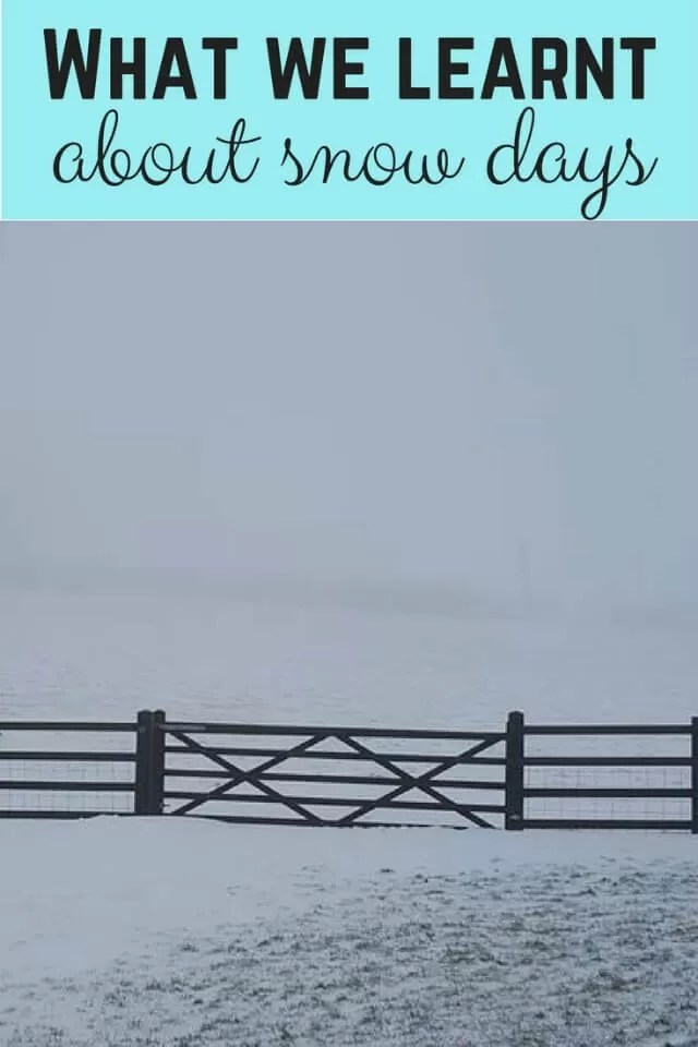 what we learnt about snow days - bubbablue and me