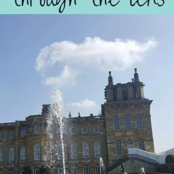 A chance to see Blenheim gardens through the lens