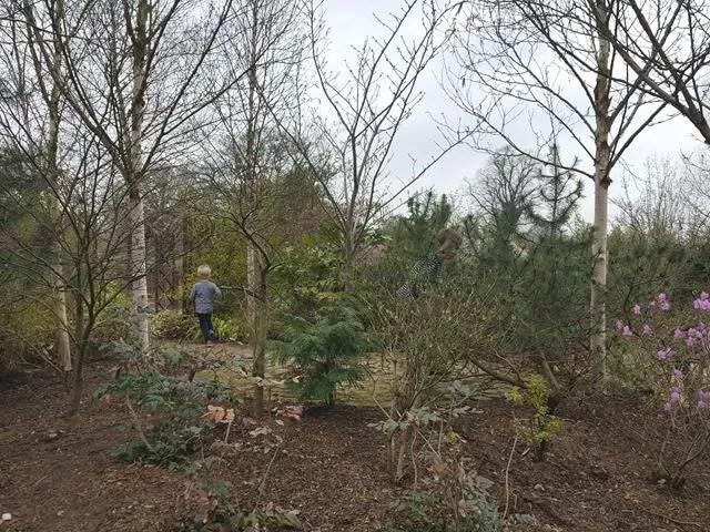 hiding children in sensory garden