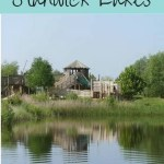 Return to Stanwick Lakes – Summer Days