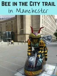 bee in the city manchester