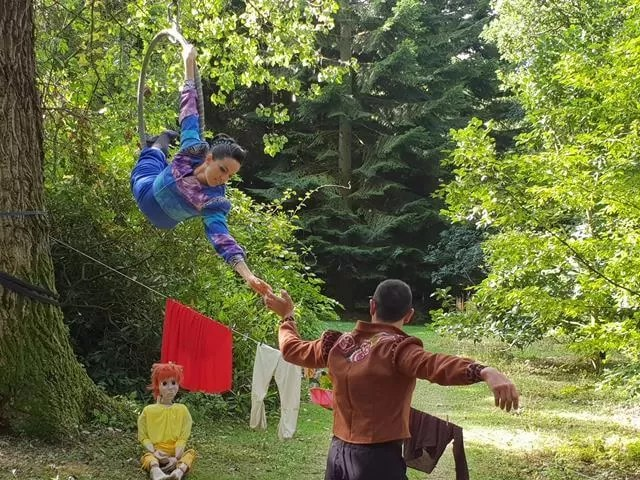 story in the trees performance
