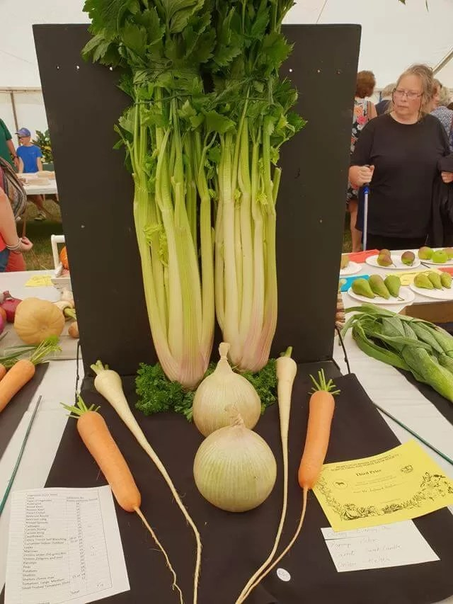 best in show vegetables
