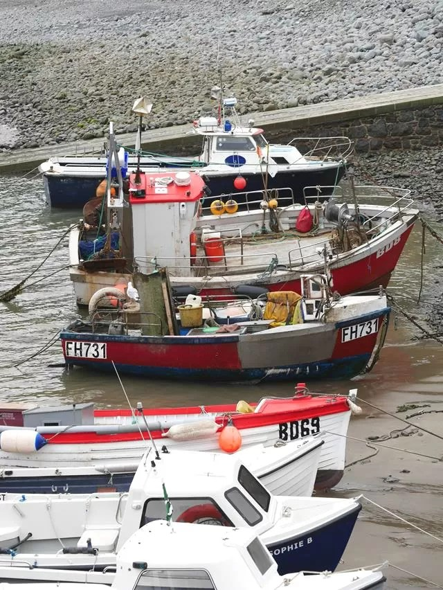 boats at clovelly harbour