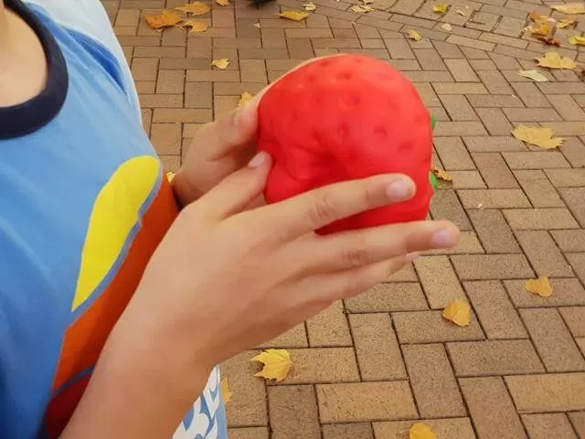 strawberry squishy