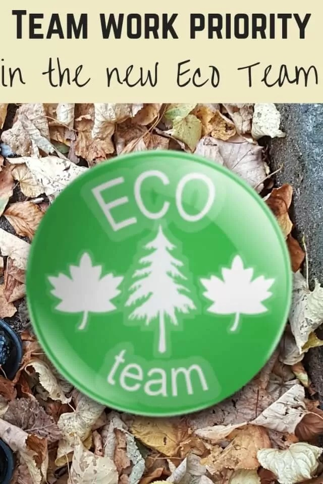 Eco team priorities - Bubbablue and me