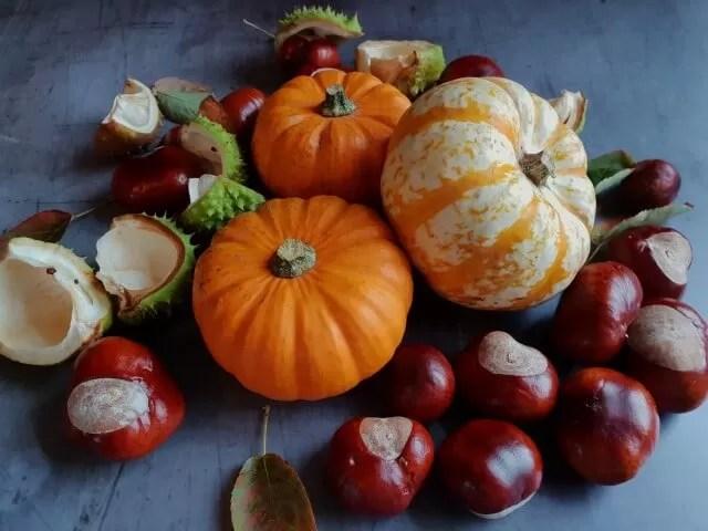 autumn flatlay