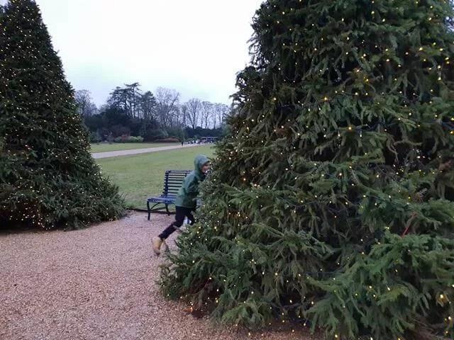 hiding behind a christmas tree
