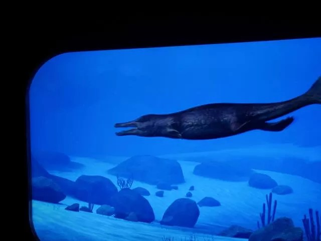 screen showing swimming ice age animals