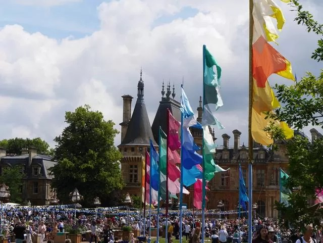 summer fest flags