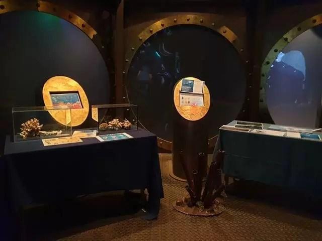 aquarium displays
