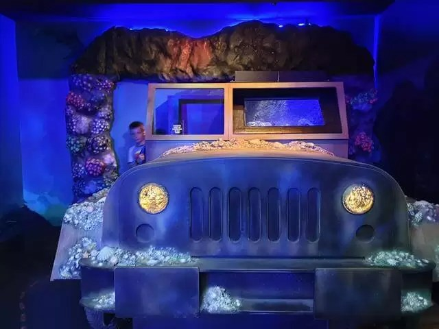sea life centre jeep