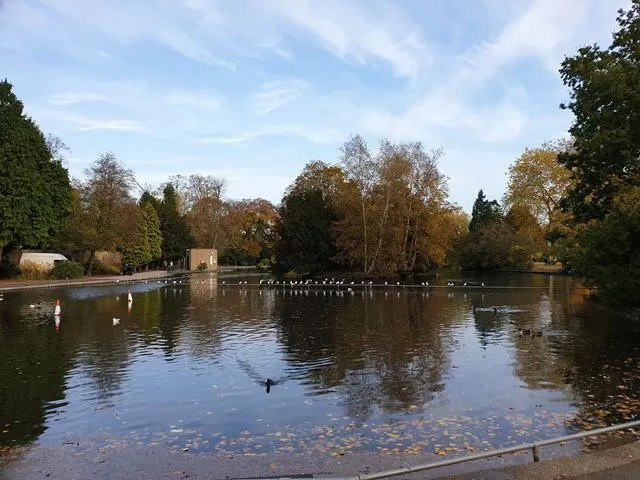 cannon hill park lake reflection