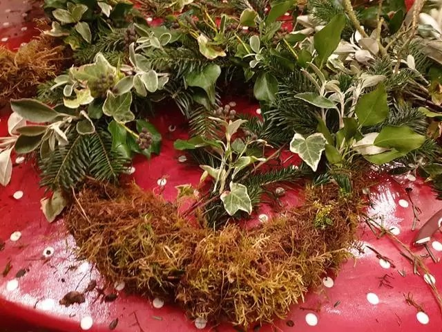 adding foliage bunches halfway round sphagnum moss base