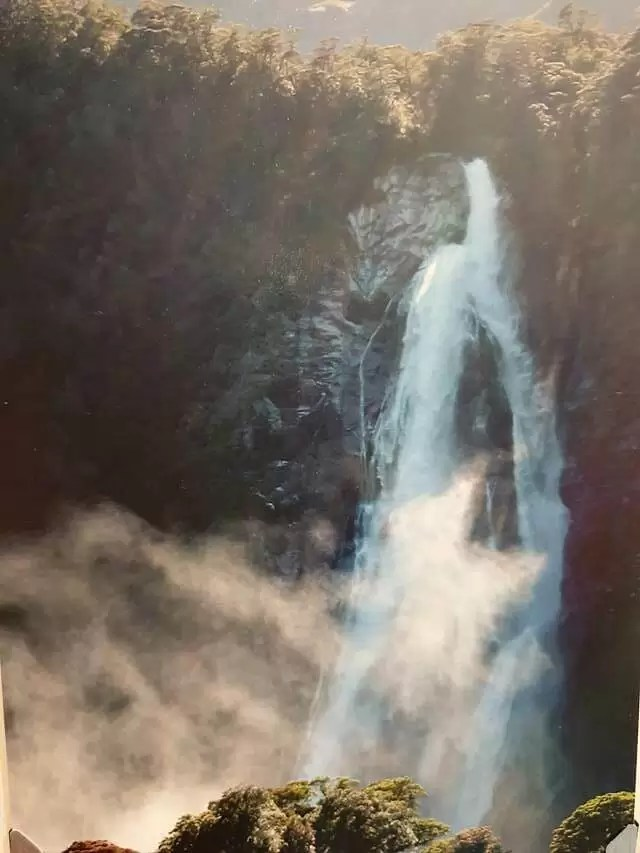 waterfalls in Milford Sound firod