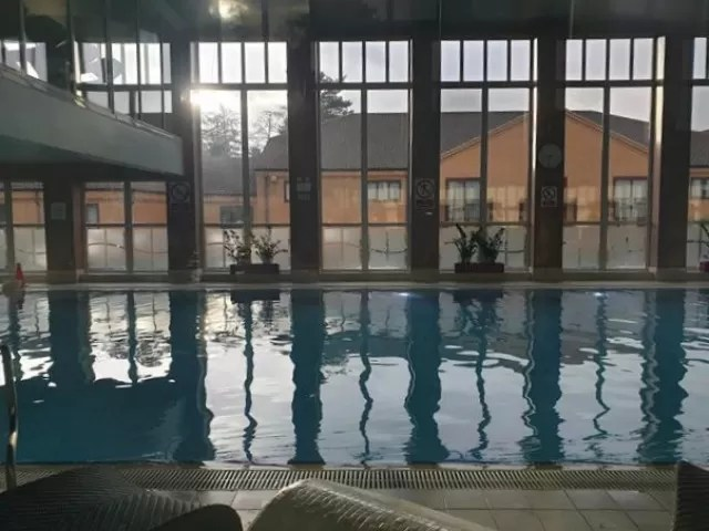 swimming pool at forest pines