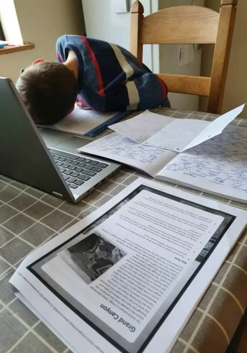 FOMO in not going back to school and still home schooling at kitchen table