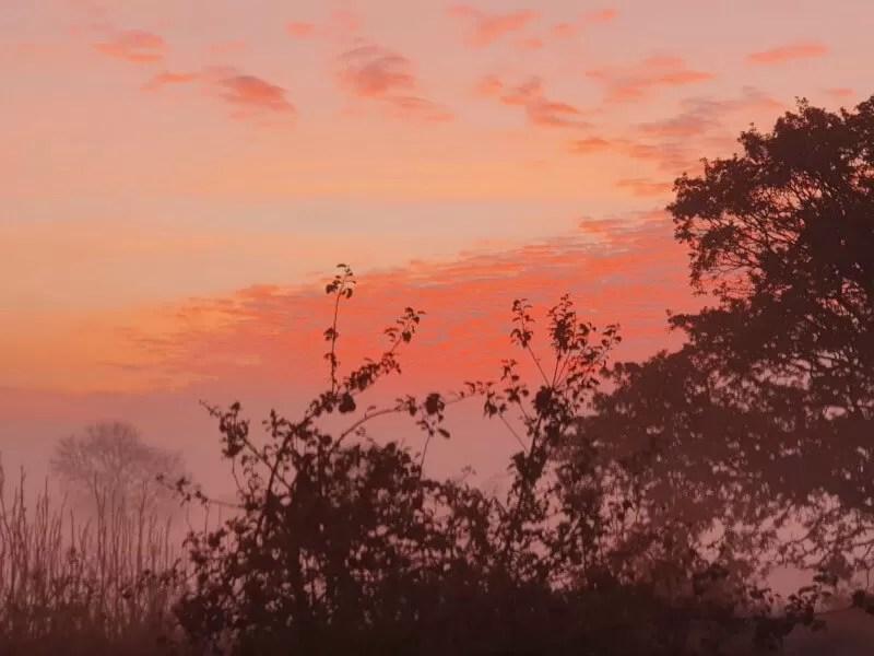 sunrise on a foggy autumn morning