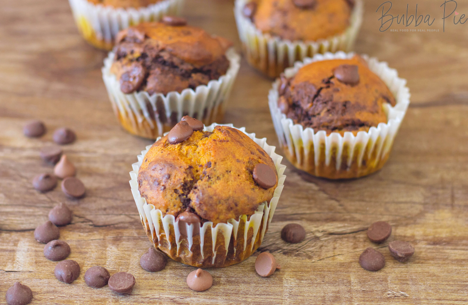Pumpkin Chocolate Chip Muffins sitting on a plate with chocolate chips make a great thanksgiving dessert.