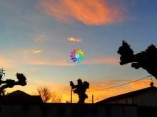 bubbleweek04-01-17-19