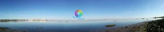 bubbleweek04-01-17-32