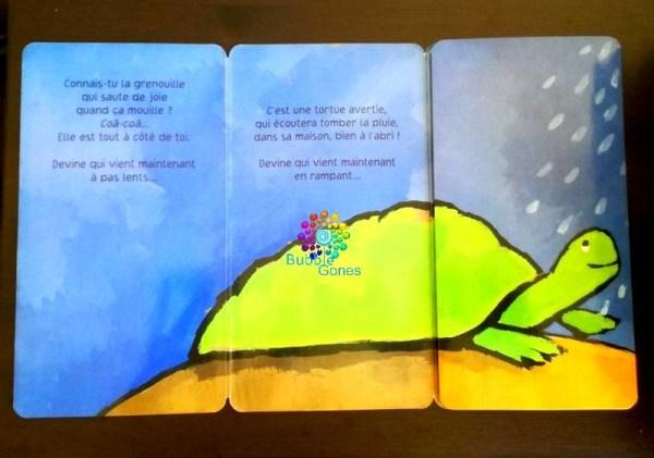 lecture enfantine grenouille qui se transforme en tortue