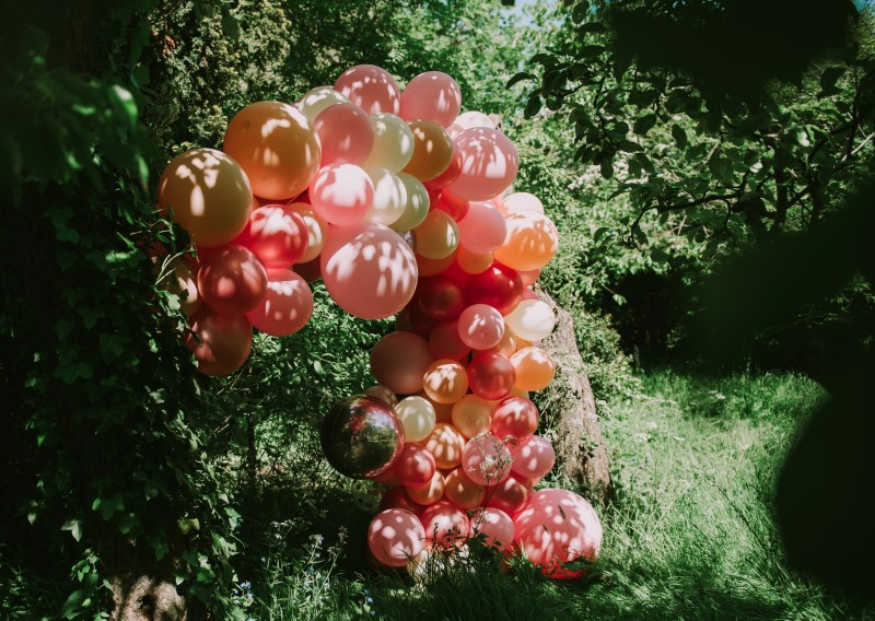 Bubblegum Balloons with Bear and Pine