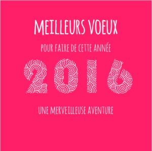 voeux 2016 Bubbles Com