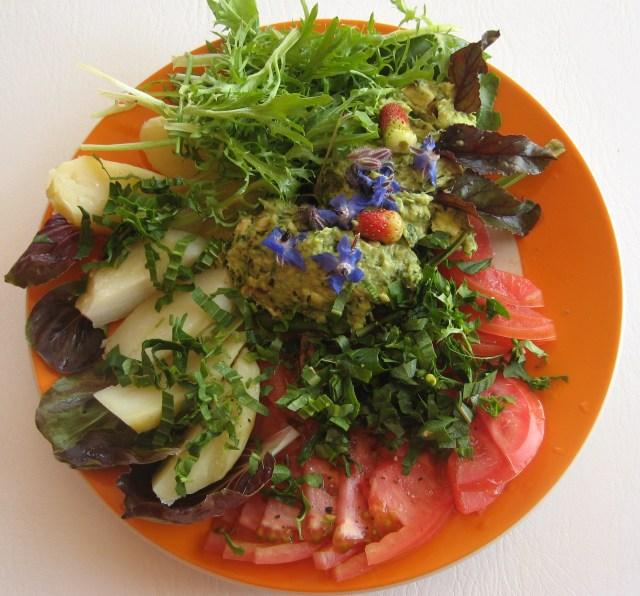 Obiad - ziolowy krem (podstawa to awokado a w nim pokrzywy, mniszek, babka i wiele innych)