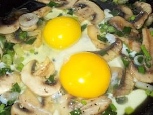 omleta cu ciuperci 1