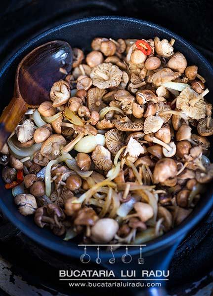 ingrediente Reteta tocanita de ciuciuleti