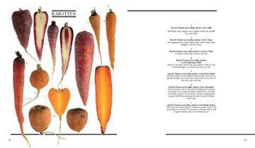 Gemüse aus dem Bauerngarten: Vergessene und besondere Sorten - Grundrezepte - Gerichte von Starköchen - 4