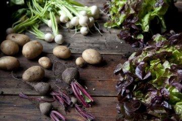 Zum Glück Gemüse. 350 Gemüserezepte für alle Jahreszeiten: Die Bibel der Gemüse Küche - 14