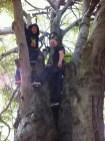 NYC Aidan & BP in a tree