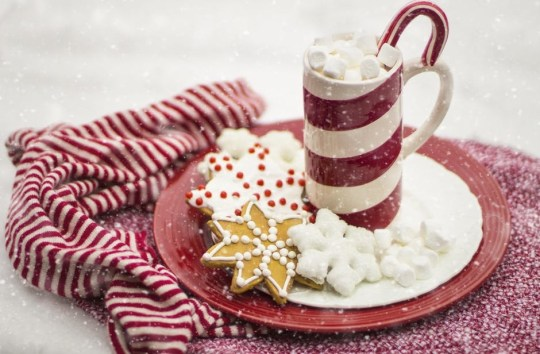 candy cane drink, and cookies on a red and white plate with red and white striped towel in the snow